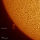 Solar Prominence - November 11,                                Damien Cannane