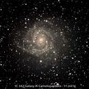 IC 342,                                Fred