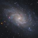 M33 - Pinwheel Galaxy in Triangulum,                                Stellario
