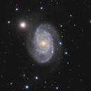 NGC 5371 and fading Supernova 2020bio,                                rhedden