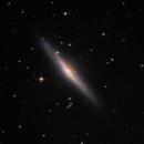 NGC2683,                                Giovanni Paglioli