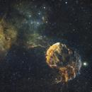 The Jellyfish Nebula (IC 443 & IC444),                                Basilio Noris