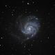 M101 - The Pinwheel Galaxy,                                Howie Silleck