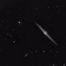 NGC 4565 - The Needle Galaxy,                                Josh Woodward
