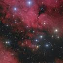 IC 1318, Gamma Cygni Nebula,                                Markus Blauensteiner