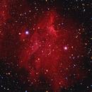 IC-5070  THE PELICAN NEBULA,                                Alfredo Vargas