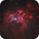 NGC 6357 Lobster,                                Don Pearce
