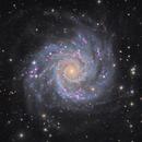 M74 Grand Design Spiral in Pisces,                                Boris Emchenko