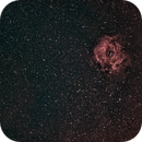 My first DSO - Rosette widefield,                                divers351
