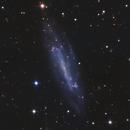 NGC4236,                                Rolandas_S
