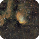 Nebuleuse Sharpless SH2 101 (Tulipe) dans le centre du Cygne,                                Denis Bergeron