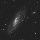 M106,                                Matthias Steiner