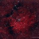 NGC 6823 / 6820 / Sh2-86,                                Ron Bokleman