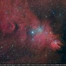 Konusnebel NGC2264,                                Andreas Zirke
