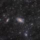 M81 M82 with IFN,                                Yuzhe Xiao