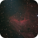 IC 5070 (Pelican nebula),                                neptun