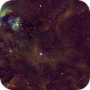 The Rubber Stamp Nebula region of the Orion Molecular Cloud, SHO,  51.1 hours,                                riot1013