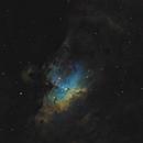The Eagle Nebula,                                Martin Williams