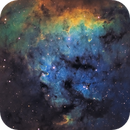 Core of NGC 7822,                                Chuck's Astrophotography