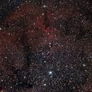 IC 1396 Elephant's Trunk nebula,                                RolfW
