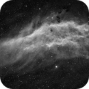 California Nebula - 48 Hours, 3x2 Mosaic, Ha Filter,                                Kai Yang