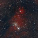 NGC 2264 - Christmas Tree Cluster (11 Jan 2021),                                Bernhard Suntinger