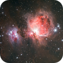 M42 - Orion's Nebula,                                Marco Bottini