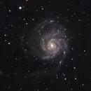 M101 Pinwheel Galaxy,                                Brandon Liew