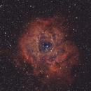 SH2-175 Rosette Nebula,                                Travis Isom