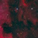 Pelican & North America Nebulae,                                BBRAUNCCP