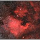 NGC 7000,                                Psion