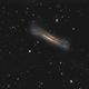 NGC 3628,                                Dan Wilson