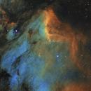IC 5070 Pelican Nebula,                                JuergenB