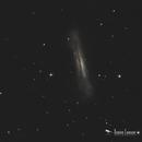 NGC 3628,                                Damien Cannane