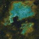 North America and Pelican Nebulae - SHO version,                                Mike Brady