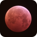 Blood Moon - Total Eclipse 21st January 2019,                                AstroNico