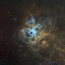 NGC2070 Tarantula Nebula,                                Peter Jenkins