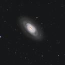 Messier 64 - The Black Eye Galaxy,                                Peter Goodhew