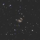 Taffy Galaxies,                                Nathan Duso