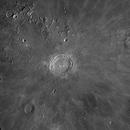 Copernicus and Vicinities,                                Jairo Amaral
