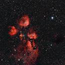 Cat´s paw NGC 6334 and Barnard 257,                                Leo