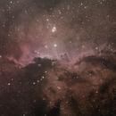 NGC6188 Dragoes de Ara 13-03-2021,                                Wagner