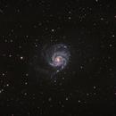 M101,                                Muhammad Ali