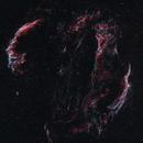 The Veil Nebula NGC 6992 and NGC 6960,                                Bob Stevenson
