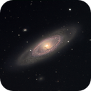 Barred Spiral NGC 4274 in Coma Berenices,                                Ian Gorin