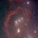 Orion,                                Floh
