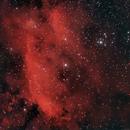 IC 4628 The Prawn Nebula,                                Elmiko
