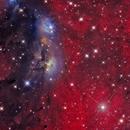 NGC 6914 - Cygnus,                                Bob Gillette