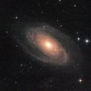 M81-M82,                                Massimiliano Magale