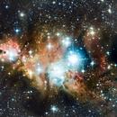 NGC 2264 - The Christmas Tree Cluster,                                Monty Giavelli
